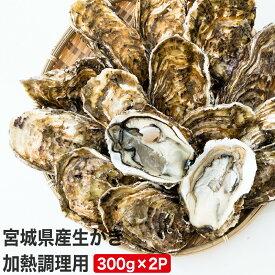 【ふるさと納税】宮城県産生かき 加熱調理用(300g×2P)