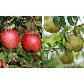 【ふるさと納税】サンふじとラ・フランス詰合せ 計5kg 【果物類・林檎・りんご・リンゴ・梨・ナシ・果物・フルーツ】 お届け:2020年11月上旬〜12月下旬