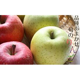 【ふるさと納税】樹上完熟葉とらずりんご 品種おまかせ 約5kg (16〜20玉) 【果物類・林檎・りんご・リンゴ】 お届け:2020年10月上旬〜2021年1月下旬