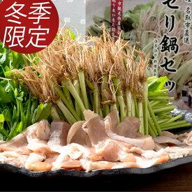 【ふるさと納税】【お届け日時指定】名取名産「せり鍋セット」2、3人前 根・茎・葉をすべて楽しむ