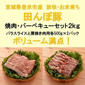 【ふるさと納税】田んぼ豚焼き肉・バーベキューセット2kg(バラスライス・肩焼肉用)