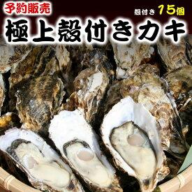 【ふるさと納税】<予約>奥松島産極上旨牡蠣(殻付き・15個)