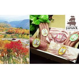 【ふるさと納税】JAPAN X ハム・ベーコン&ソーセージセット/計705g 【お肉・肉の加工品】