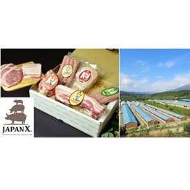 【ふるさと納税】牧場直送JAPAN X堪能コース/計7.2kg 【お肉・豚肉】