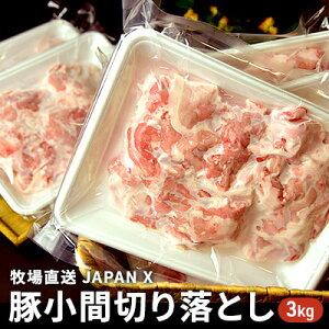 【ふるさと納税】牧場直送JAPAN X 豚小間切り落とし/計3kg 【お肉・豚肉】