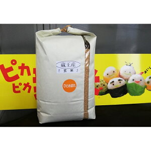 【ふるさと納税】蔵王産ひとめぼれ10kg(玄米) 【お米・玄米】