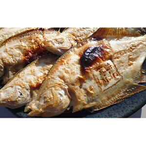 【ふるさと納税】【魚屋hide】鳥の海の焼きがれい(大:6〜9枚) 【カレイ・魚介類・魚貝類・加工食品】