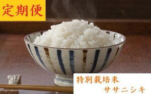 【ふるさと納税】<10か月定期便>特別栽培米 ササニシキ 7kg×10回(全70kg)【04421-0011】