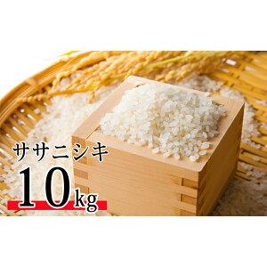 【ふるさと納税】令和元年産 特別栽培米 ササニシキ 10kg 【米・お米・ササニシキ】