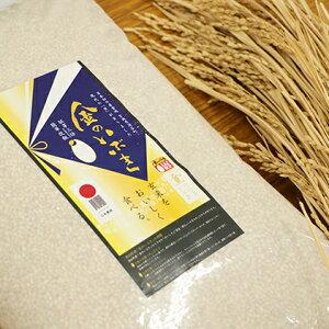 【ふるさと納税】金のいぶき玄米 5kg 【玄米・お米】