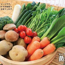 【ふるさと納税】黄金の郷 季節のお野菜お楽しみBセット 【野菜・セット・詰合せ・野菜・きのこ】