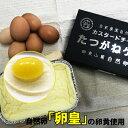 【ふるさと納税】自然卵「卵皇」使用 たつがねケーキ〜カスタードチーズケーキ〜 ほろほろ しっとり 【お菓子・チ…
