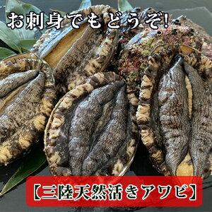 【ふるさと納税】三陸天然活アワビ1kg(6〜8個入) お刺身 ステーキ 【魚介類・貝・あわび・鮑】