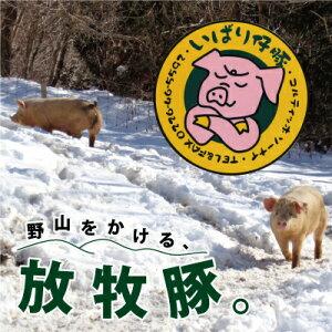【ふるさと納税】【定期便 3か月連続】シェフもおすすめ「日本で一番おいしい豚肉!」★いばり仔豚★ソーセージ&ベーコン&ハム詰め合わせコース 【定期便・お肉・ベーコン・ウィン