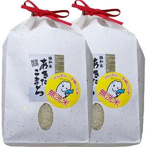 【ふるさと納税】秋田市雄和産あきたこまち清流米(無洗米) 精米2kg×2袋【1112455】