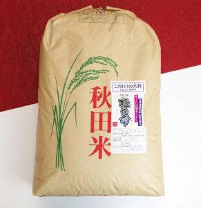 【ふるさと納税】 あきた種梅産こまち 杜の雫『こだわりの大粒』 玄米30kg×1袋