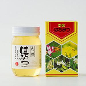 【ふるさと納税】50P5405 栃蜂蜜 500g