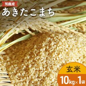 【ふるさと納税】あきたこまち玄米10kg 【精米・お米・あきたこまち】