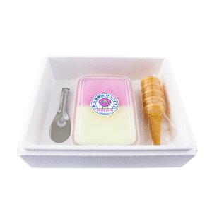 【ふるさと納税】お試し!児玉冷菓のババヘラアイスセット 【お菓子・アイス】