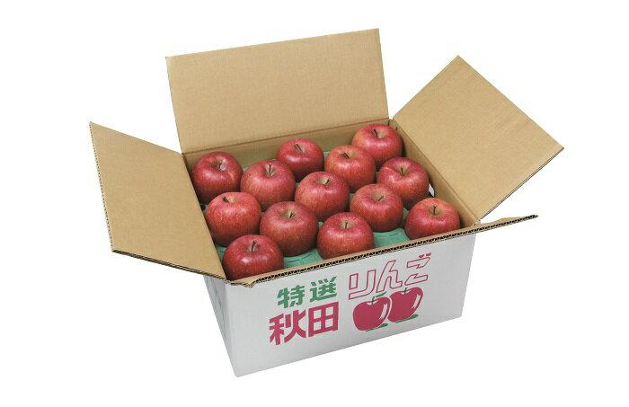 【ふるさと納税】B2703 りんご(ふじ)5kg箱