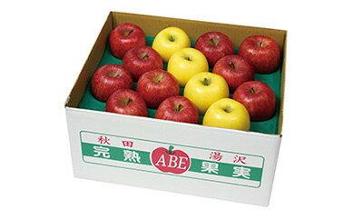 【ふるさと納税】B3001 完熟りんご