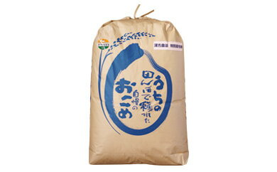 【ふるさと納税】C2101 特別栽培米 漢方栽培精米20kg