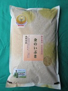 【ふるさと納税】令和元年産米 E2102 漢方農法 特別栽培米 金のいぶき5kg 6ヶ月定期便