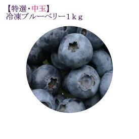 【ふるさと納税】【特選・中玉】冷凍ブルーベリー1kg