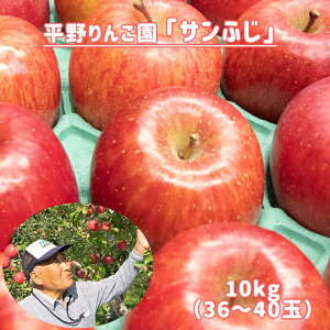 【ふるさと納税】サンふじ 10kg(36〜40玉入り)【平野りんご園】