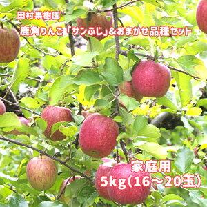 【ふるさと納税】りんご サンふじ&おまかせ4品種セット 家庭用5kg 【田村果樹園】