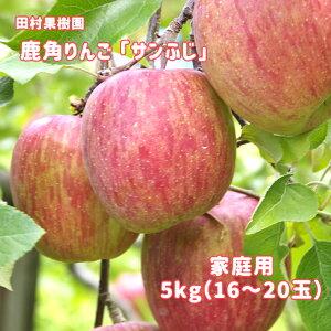 【ふるさと納税】りんご サンふじ 家庭用5kg 【田村果樹園】
