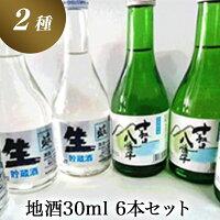【ふるさと納税】地酒300ml6本セット【千歳盛酒造】