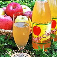 【ふるさと納税】平塚果樹園りんごジュース1000ml6本