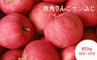 【ふるさと納税】りんご旬のりんごりんごサンふじ18玉〜20玉約5Kg【平塚果樹園】