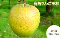 【ふるさと納税】りんご旬のりんご王林18玉〜20玉約5kg【平塚果樹園】