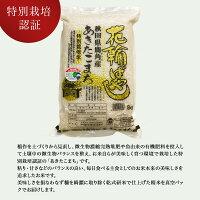 【ふるさと納税】令和元年産特栽『花輪ばやし』精米15kg【安保金太郎商店】