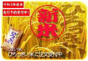 【ふるさと納税】V10008(令和3年産新米先行予約!発送は11月上旬〜)ひろっきい米【無農薬ミルキークイーン10kg】(玄米)