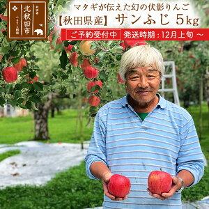 【ふるさと納税】 【予約受付中】令和3年産 秋田県産サンふじ 伊東さんの「伏影りんご」 約5kg(16〜18玉入) 個数限定 発送時期 12月上旬〜 リンゴ マタギのりんご