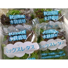 【ふるさと納税】鳥海山伏流水で育てた新鮮ミックスレタス4袋 【野菜】