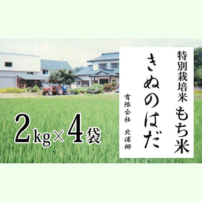 【ふるさと納税】仙北市産 もち米 2kg×4袋(合計:8kg)