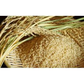 【ふるさと納税】【炭壌米 ゆめおばこ】元年産 玄米 5kg×2袋(合計:10kg) 【お米】 お届け:2019年11月上旬頃から順次発送予定。
