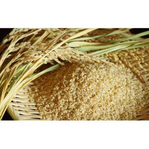 【ふるさと納税】【炭壌米 ゆめおばこ】元年産 玄米 5kg×6袋(合計:30kg) 【お米】 お届け:2019年11月上旬頃から順次発送予定。
