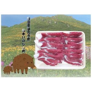 【ふるさと納税】清水ミート限定!!秋田県仙北市産日本いのしし肉 500g 【猪肉】