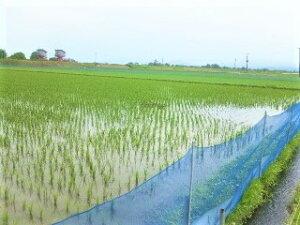 【ふるさと納税】U012 アイガモ農法米あきたこまち玄米5kg