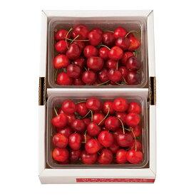 【ふるさと納税】《先行予約》さくらんぼ 紅秀峰 1kg(500g×2)(バラ/特/2L) F2Y-0163