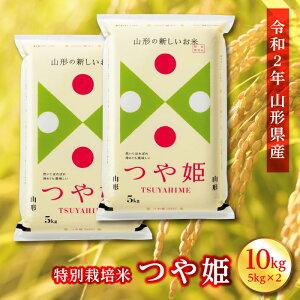 【ふるさと納税】山形県産 令和二年度産 特別栽培米 つや姫 10kg(5kg×2) F2Y-1131