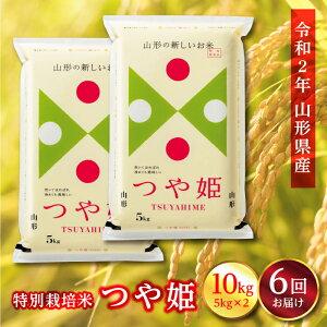 【ふるさと納税】《定期便》山形県産 特別栽培米 つや姫 10kg(5kg×2)×6回 F2Y-1134