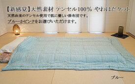 【ふるさと納税】FY19-471 【新感覚】天然素材 テンセル100% やわはだケット(ブルー)