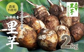 【ふるさと納税】FY18-098 農薬不使用 山形特産自社栽培土付里芋2kg!(さといもやのおすすめ品)