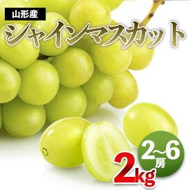 【ふるさと納税】FS19-698 シャインマスカット 秀2kg(2〜6房)